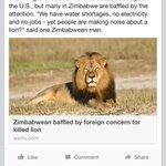 THANK YOU, ZIMBABWEAN MAN http://t.co/aPqY5c18c3