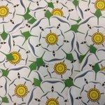 Yorkshire Day Tomorrow - fancy a Yorkshire Rose Tattoo? http://t.co/yJcRHHgipZ