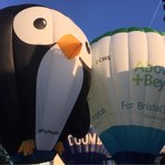 A flying penguin in Bristol this morning #BalloonFiesta @XBallooning http://t.co/w74sZp9xvw