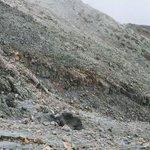 【9ヶ月ぶりの捜索】御嶽山で1人の遺体を発見 長野・岐阜両県が発表 http://t.co/7Ti1rb85ZE 行方不明だった6人のうちの1人とみて、身元の確認を進めている。 http://t.co/Vbs46eG3Mt