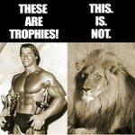 Well said, Arnie! http://t.co/FUrdN7AD0x