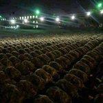 عينان لا تمسهما النار: عين بكت من خشية الله وعين باتت تحرس في سبيل الله... #القوات_المسلحة_الاردنية #الاردن http://t.co/cYot5PaJN3