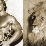 These are trophies, #CecilTheLion is not, says Arnold Schwarzenegger http://t.co/4fKmGwjS6b http://t.co/lp7xANvad7