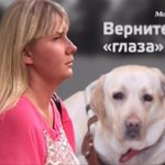 Все подробности возмутительной кражи собаки-поводыря http://t.co/qbFdOi16zk http://t.co/idXXMr9Saf