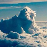 RT @Varun_dvn: #CecilTheLion will be remembered forever. He has sparked a fire. The world should hang the man who killed him