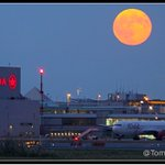 #BLUEMOON rises over @AirCanadarouge at @TorontoPearson #Toronto #PearsonPOV https://t.co/fR274m0yH5 #Moon @AirCanada http://t.co/9AfeYr17hv