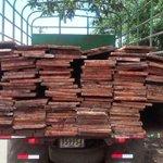 #Provincias: @MiAmbientePma retiene madera en Veraguas. Detalles en http://t.co/aX9dsp8Inc http://t.co/hXADmxtH7N