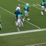 New #Dolphins DT Ndamukong Suh (No. 93) takes the practice field for the first time in full pads today. http://t.co/jReKj2dISK