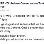 Officials n #Zimbabwe say brother of #CecilTheLion also shot. http://t.co/9TdRlzO3ni