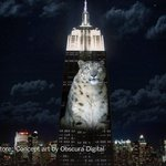 Giant images of endangered species will be projected on the Empire State Building tonight http://t.co/umsrxWpiXN http://t.co/EJ6lVgsrC8