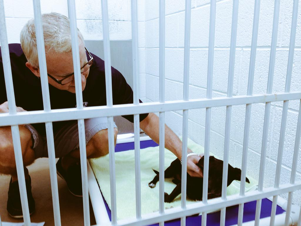 Locked up w my bud Maxx today. Wanna get him n me OUT! http://t.co/3g0jIILpIz #SummertoSaveLives @FreeJesseJames http://t.co/hvcQOSZBxw
