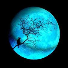 What's Happening?  #BlueMoon #Caturday!.  Only happens once every 21 years! http://t.co/Cq9ta13A9h