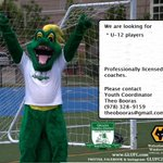 We are looking for a couple of U-12 girls to complete a team. Be a Dragon. Professional coaches! #Lowell #SoccerMom http://t.co/lCjliPjyIS