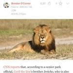 Gawker wants you to know that Cecil the Lions brother is also a lion. http://t.co/MouVHdMgyx