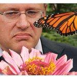 Womans Obit Asks Canada To Vote Out Harper! http://t.co/L47wVzTf47 #cdnpoli @cbcnews @Buzzfeednews http://t.co/QQqzaUrC8m