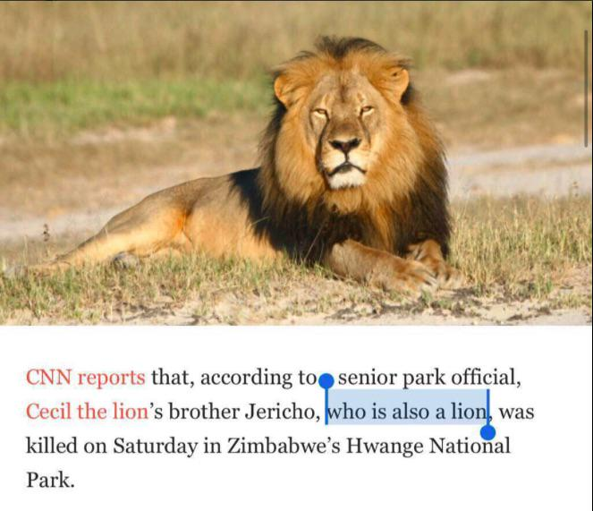 CNN's report that Cecil the Lion's BROTHER was killed seems to be incorrect. But meanwhile, I love this excerpt. http://t.co/jCGt7GJaoL