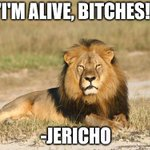 Sounds like its Jericho doing the poaching. RT @DailyMirror GPS readings show Jericho is ALIVE and with a female http://t.co/h2mAXun5bb