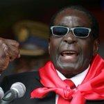 Dentist kills Zimbabwe lion. Dictator Mugabe kills 1000s of Zimbabwe people over 40 years. http://t.co/x4dL3lhiTo