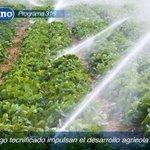 Impulso al desarrollo agrícola de zona rural a través de sistemas de riego tecnificados #ElCiudadano316 @CavoZambrano http://t.co/KJ6xV2POWX