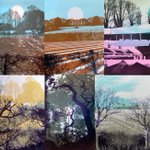 Ruth McDonald prints available at The Print Block Studio Sale #Whitstable TODAY near @eastquay & @brewerybarwhits http://t.co/wKIYjQsuMo