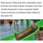 Little known fact... http://t.co/kDRjLPtTOJ