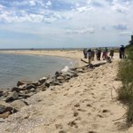 Victim in Cove Point drowning yesterday identified as 57yo Michael Oliver of Clinton, MD. @wusa9 http://t.co/v96aZeMy6D