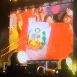 HABIA UNA PERUANA EN EL CONCIERTO #OTRAPittsburgh   #1DPeru http://t.co/UiDb8KCh3s