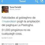 @CARLOSLGUERRERO @martinolimx @LuisMiSalvador @GarciaPosti @donrober_ @vichernandezm jajaja paren al Tuca http://t.co/x1PH2JZail