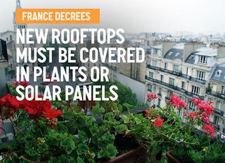 Tijd voor meer #duurzaamheid op daken zodat ons #dakpotentieel beter benut gaat worden. @Groen010 @RooflifeNL http://t.co/7L04GQkxL6