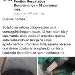 #MascotaBuscaHogarBUC @OrlandoBeltranQ: URGENTE: Perrita parida con 13 cachorritos en @LebrijaCapital requiere hogar http://t.co/qxLLBlkLIT