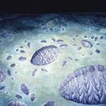 How did Ediacarans reproduce? Ingenious statistics reveal rangeomorph biology http://t.co/2eWhdbk45F http://t.co/7qaE73GQD3