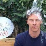 A un año del #IceBucketChallenge, ¿se logró algo? http://t.co/DSgD5Pn1cX http://t.co/jQlTqM4L1u