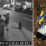HitchBOTs murder thought to be captured in surveillance footage http://t.co/DzK3SlJCSw http://t.co/qnHWbCPCL6