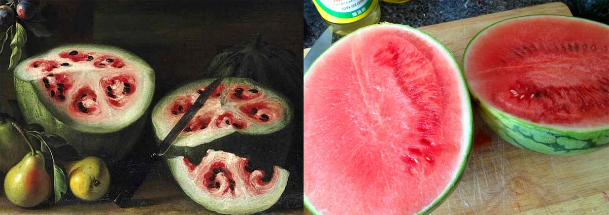 A 17th-Century painting reveals the rapid change in watermelons through selective breeding: http://t.co/9OYdlyrGvf http://t.co/pPtMGWEwMj