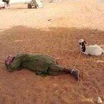 When you unemployed and o bolellwa tshele everyday http://t.co/nESjNT4m7Y