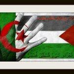 من قال #فلسطين_ليست_قضيتي فهو لايمت للشرف والانسانية بصلة و #فلسطين_قضيتي وقضية كل عربي ومسلم شريف فهي قلبنا النابض http://t.co/q35KGjaB6Q