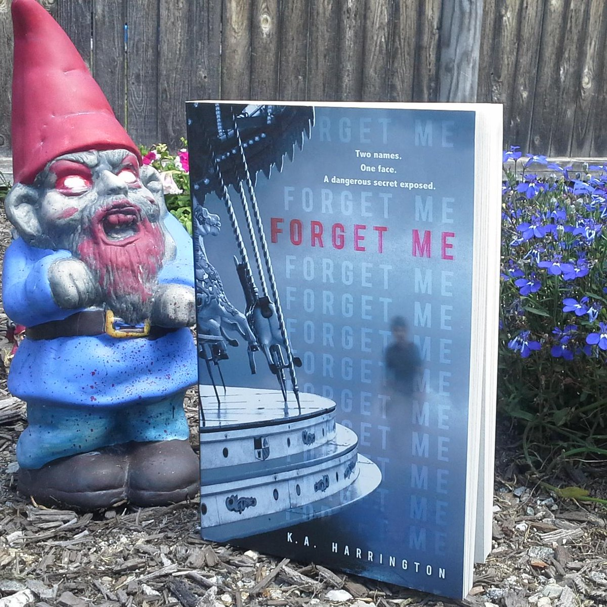 Paperback release day! RT this by 8/9 for a chance to win a signed FORGET ME. (Zombie gnome not incl.) @PenguinTeen http://t.co/rK8Coz4QGo
