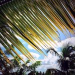 Good Morning from the #Caribbean Island of Puerto Rico! #PuertoRico ????☀ http://t.co/sRTOy6lCs5