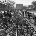 Davis & cycling @guardian article http://t.co/YRnfnwvG2H [pic Ansel Adams; Davis 1963] http://t.co/aFmhvnm3e9