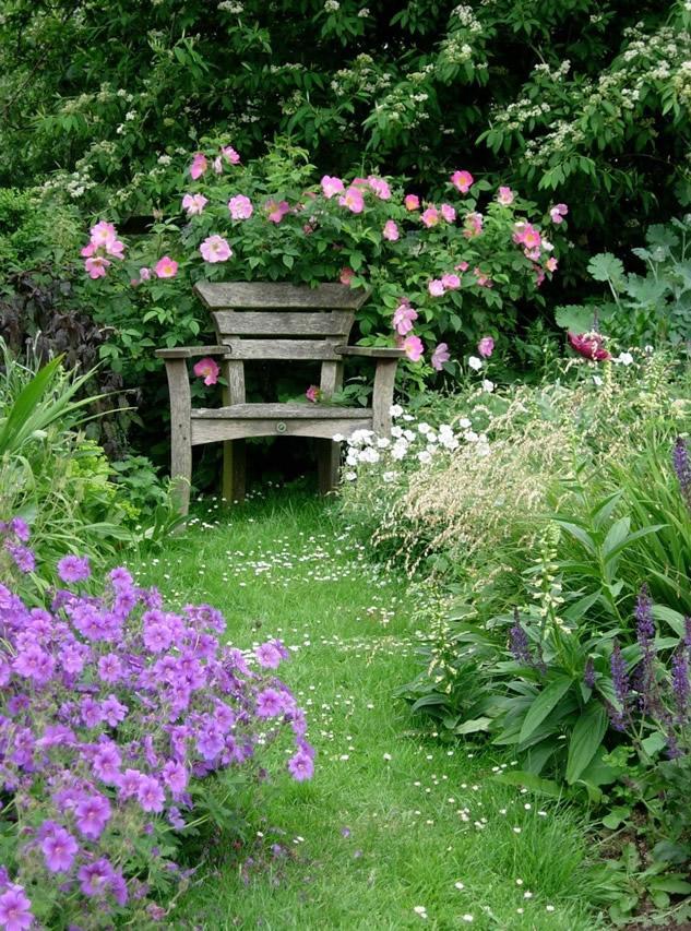 Why do you garden? http://t.co/VJSIQk3qkr http://t.co/XxbFjoDRrk