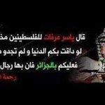 #فلسطين_ليست_قضيتي سحقا لك يا حقير ياجبان #فلسطين_قضيتي في قلوب كل الجزائرين #الجزائر #فلسطين http://t.co/uotSBY7NQ9