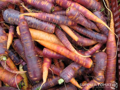 Las zanahorias eran de colores hasta que los holandeses criaron variedades naranja (S. XVI) - http://t.co/e2crJbXhzF http://t.co/QD3pO67mxZ