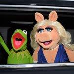 """""""@CNNEE: El más reciente divorcio en Hollywood: la Rana René y Miss Piggy se separan http://t.co/rmlRraFH0b http://t.co/9pTZ7EvKHj"""" 😭😭"""