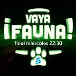 HOY, gran final de @VayaFaunaTV > http://t.co/m4hRXXMtvc http://t.co/SYPFg3oLWY