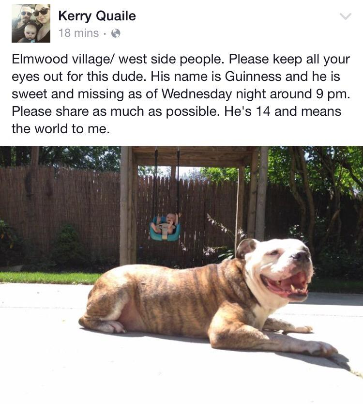 Hey city residents. Keep an eye out for this guy. Please spread the word. He needs to get home asap! @DogsOfBuffalo http://t.co/iltSR4j5jb
