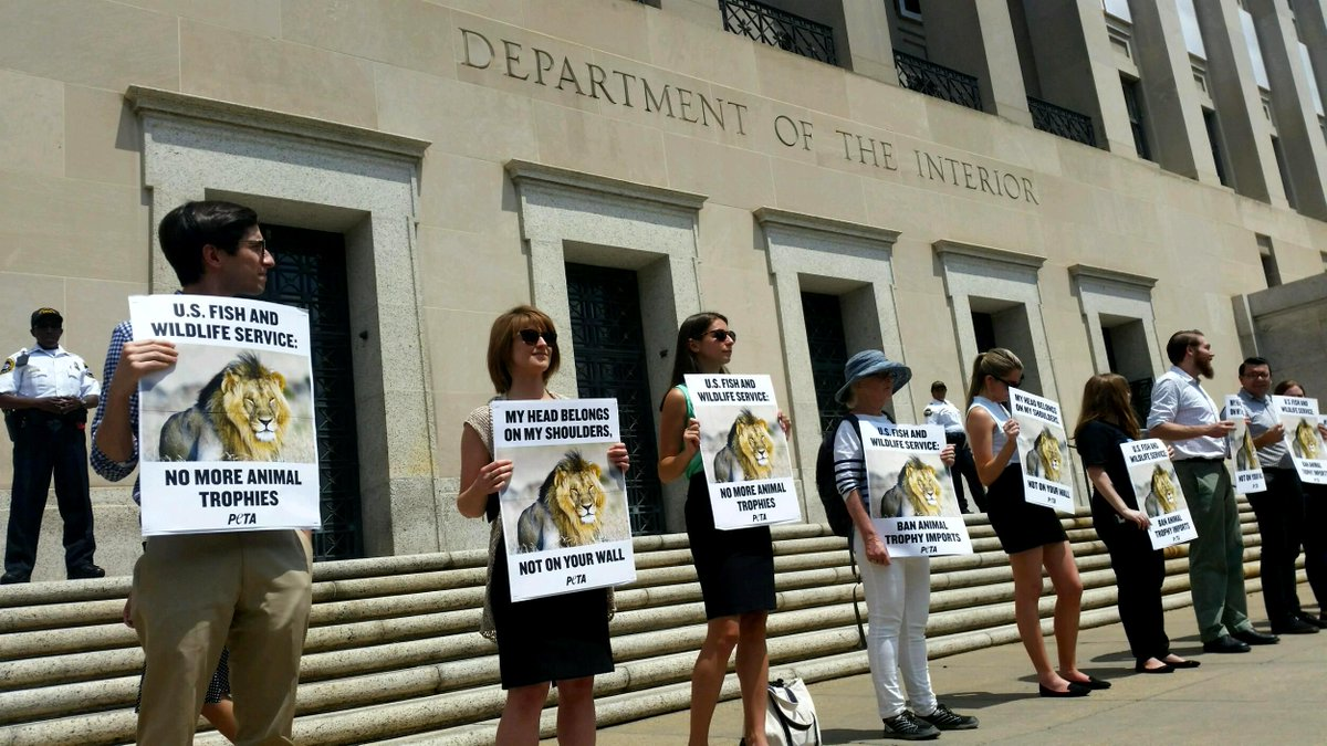 RT @peta: Lions are NOT trophies! PETA protests to demand @USFWS  ban the importation of heads, tails, & skins. #CecilTheLion http://t.co/6…