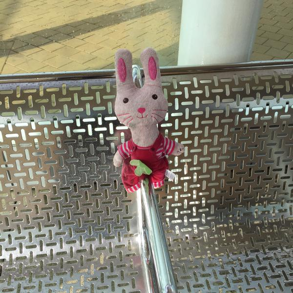 Passengers, we have a lost bunny still waiting to be collected from Perth Station InfoCentre http://t.co/vD1kRr9Xld http://t.co/5x5dVzY4Mc