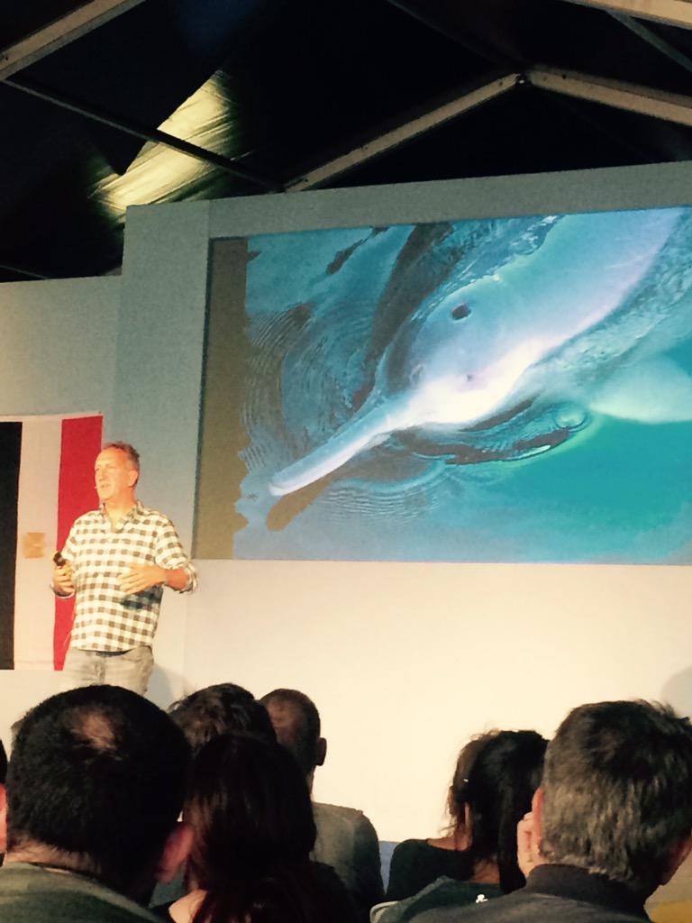 """The Yangtze River Dolphin is extinct and it didn't even make the news"" - Mark Cawardine #Birdfair > so sad! http://t.co/b8e3QbPXij"