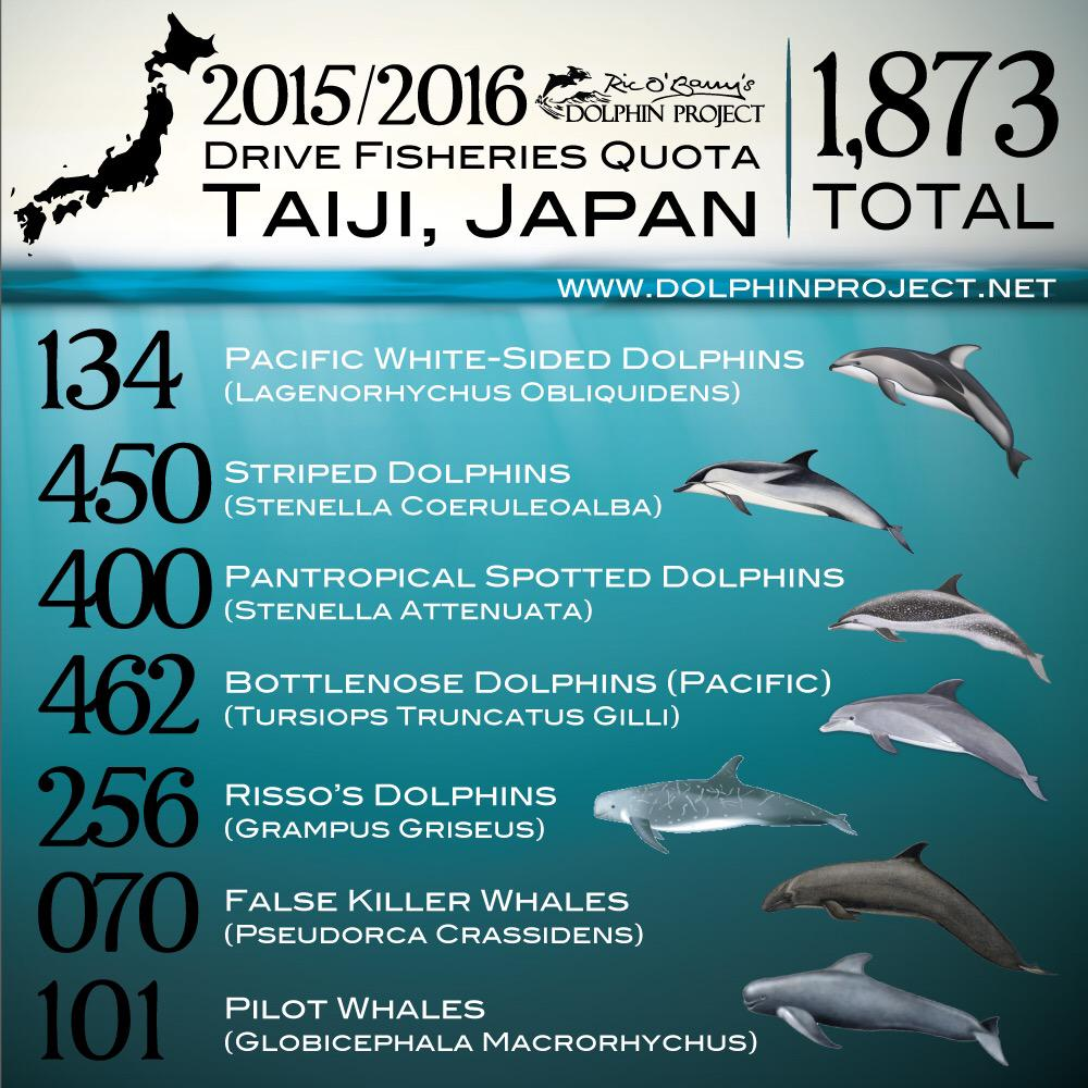 RT @Dolphin_Project: 2015/2016 Taiji dolphin slaughter quota #TheCove #DolphinProject http://t.co/ZpmauSsuJx