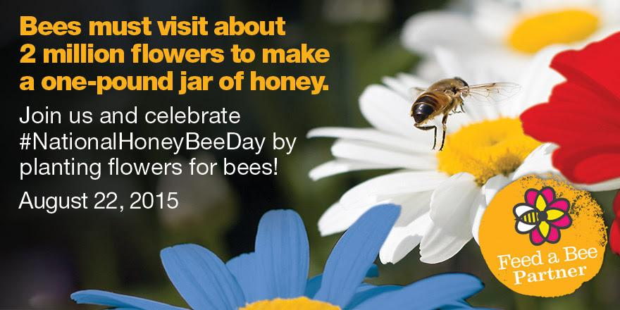 Saturday is #NationalHoneyBeeDay. Celebrate  their contribution to pollination and ag. How do you #feedabee? http://t.co/sGvnpDR736